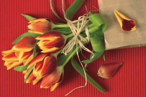 Чем порадовать женщин на 8 марта? Подарки на международный женский день